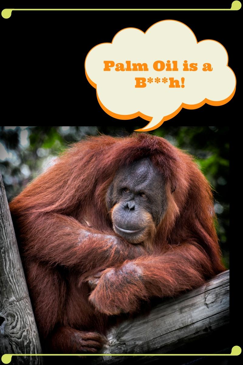 Palm Oil is a B***h!